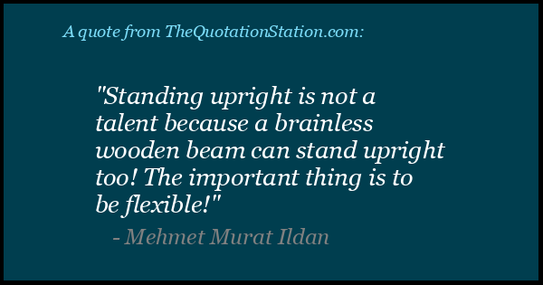 Click to Share this Quote by Mehmet Murat Ildan on Facebook